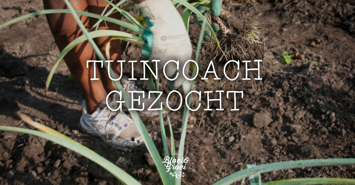 Bloei groei bevlogen tuin coach co rdinator gezocht for Vacature tuin