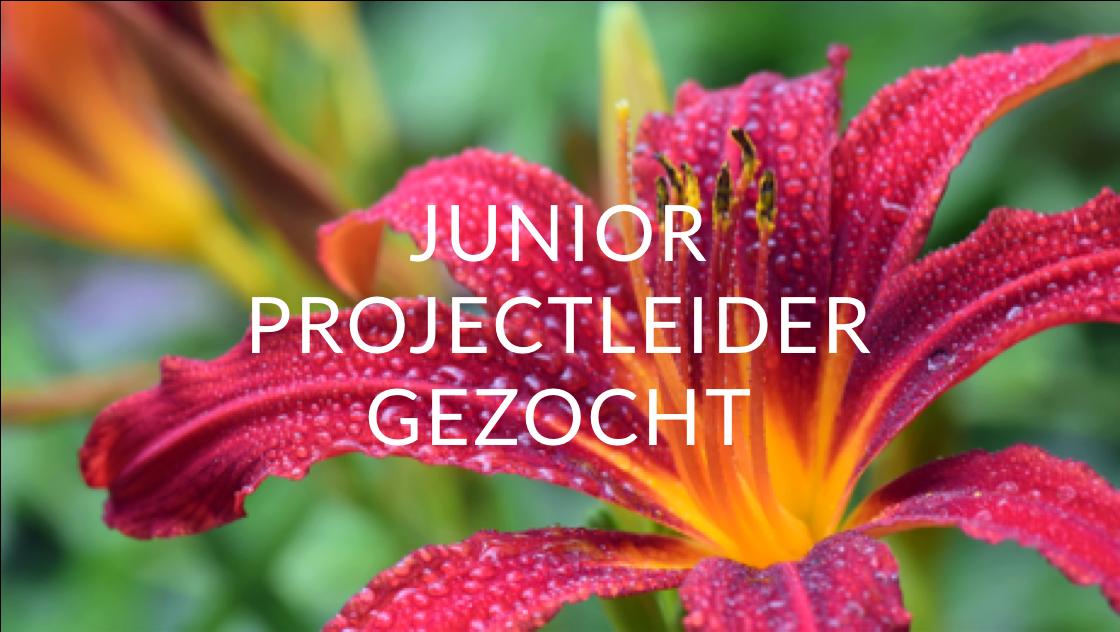 vacature-bloei-en-groei-junior-projectleider-gezocht