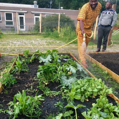 Bloei & Groei - Partners in de tuin
