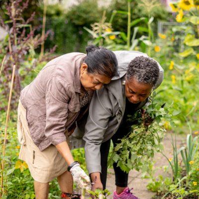 Bloei & Groei - wij werken en groeien samen