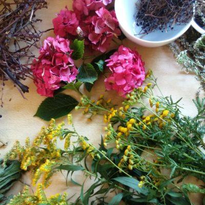 Bloemen op tafel - Workshops Bloei & Groei