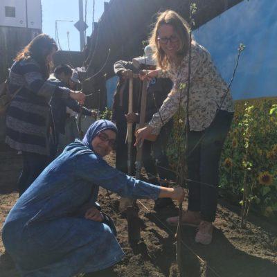 Samen tuin opzetten met Bloei & Groei