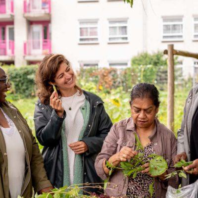 Oogsten van de tuin - Bloei & Groei