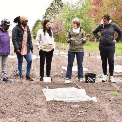 Tuinplanning - onze werkwijze - Bloei & Groei